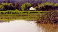 bios_yurt, water 124
